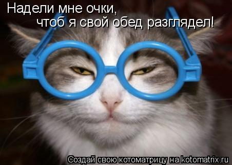 Котоматрица: Надели мне очки, чтоб я свой обед разглядел!