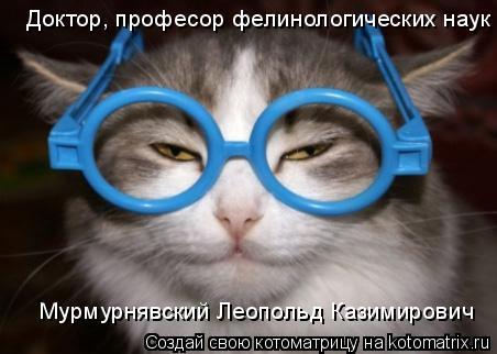 Котоматрица: Доктор, професор фелинологических наук Мурмурнявский Леопольд Казимирович