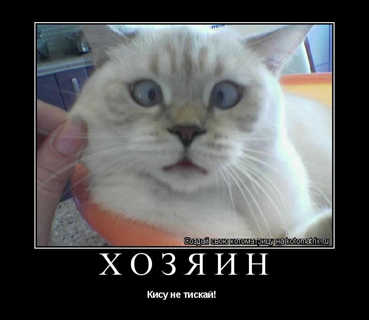 Котоматрица: Хозяин Кису не тискай!