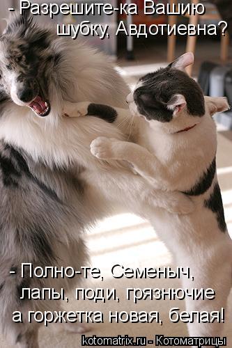Котоматрица: - Разрешите-ка Вашию  шубку, Авдотиевна? - Полно-те, Семеныч,   лапы, поди, грязнючие а горжетка новая, белая!