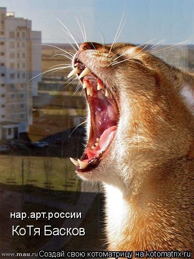 Котоматрица: КоТя Басков нар.арт.россии