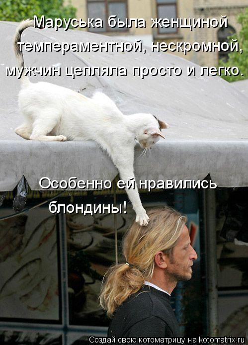 Котоматрица: Маруська была женщиной  темпераментной, нескромной, мужчин цепляла просто и легко. Особенно ей нравились  блондины!