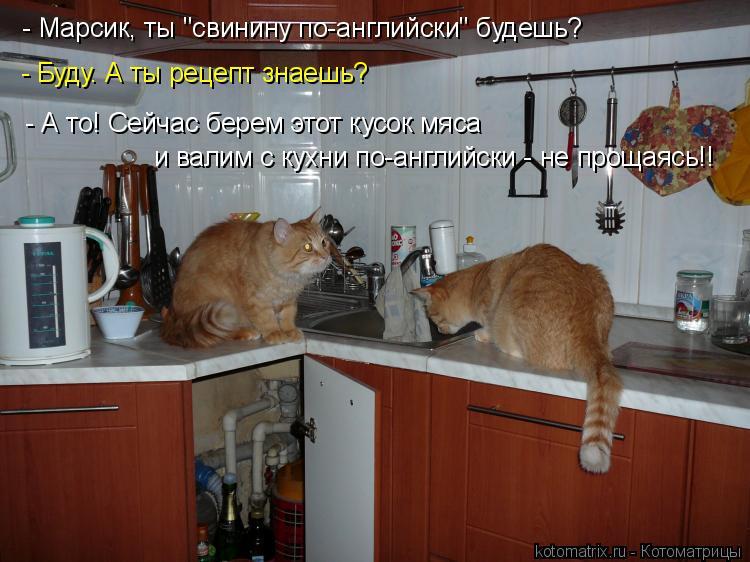 """Котоматрица: - Марсик, ты """"свинину по-английски"""" будешь? - А то! Сейчас берем этот кусок мяса  - Буду. А ты рецепт знаешь? и валим с кухни по-английски - не прощ"""
