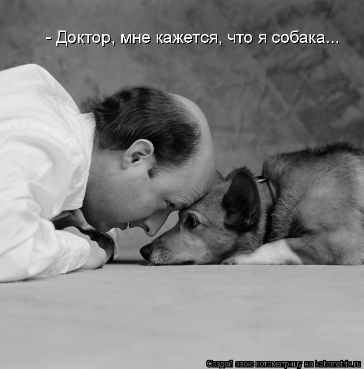 Котоматрица: - Доктор, мне кажется, что я собака...
