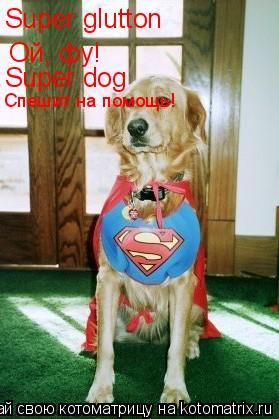 Котоматрица: Super glutton Ой, фу! Super dog Спешит на помощь!