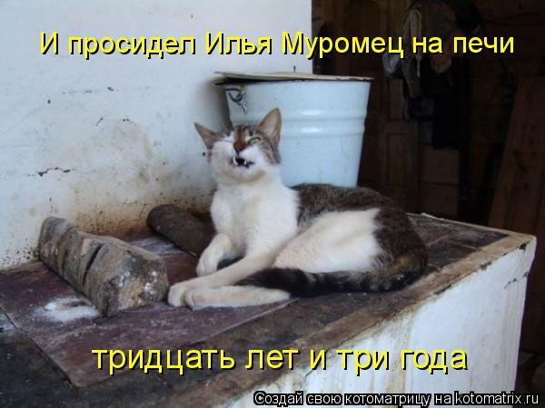 Котоматрица: И просидел Илья Муромец на печи тридцать лет и три года