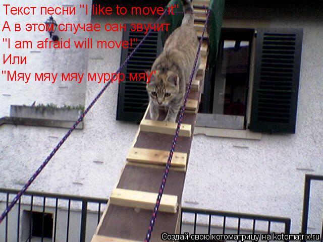 """Котоматрица: Текст песни """"I like to move it"""" А в этом случае оан звучит """"I am afraid will move!"""" Или """"Мяу мяу мяу муррр мяу"""""""