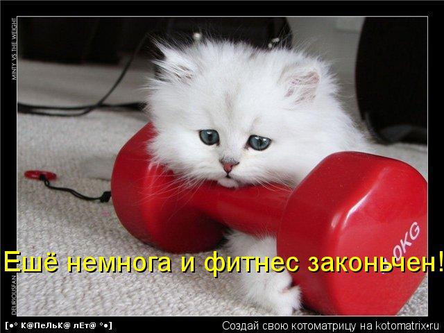Котоматрица: Ешё немнога и фитнес законьчен!!!!