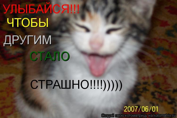 Котоматрица: СТАЛО СТРАШНО!!!!))))) ЧТОБЫ ДРУГИМ УЛЫБАЙСЯ!!!