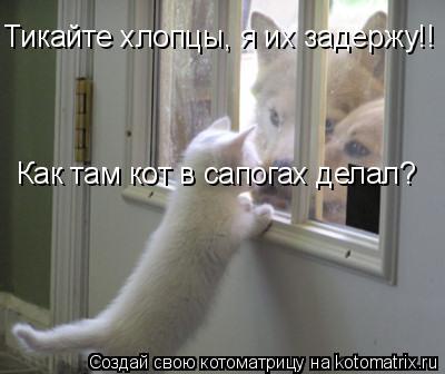 Котоматрица: Тикайте хлопцы, я их задержу!! Как там кот в сапогах делал?