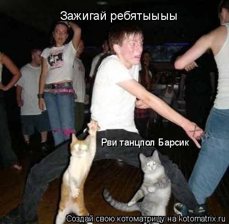 Котоматрица: Зажигай ребятыыыы Рви танцпол Барсик