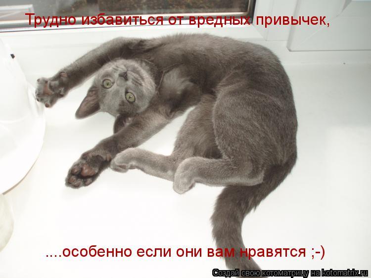 Котоматрица: Трудно избавиться от вредных привычек,  ....особенно если они вам нравятся ;-)