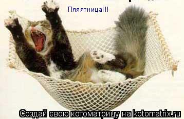 Котоматрица: Пяяятница!!!