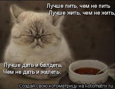 Котоматрица: Лучше пить, чем не пить Лучше жить, чем не жить,  Лучше дать и балдеть,  Чем не дать и жалеть.