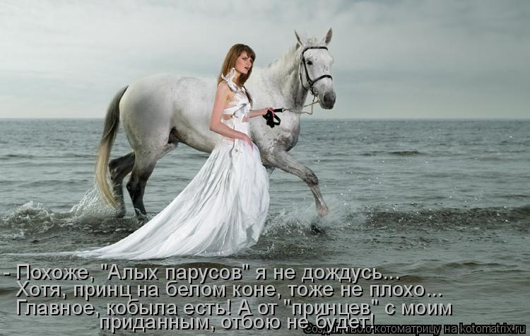 """Котоматрица: - Похоже, """"Алых парусов"""" я не дождусь... Хотя, принц на белом коне, тоже не плохо... Главное, кобыла есть! А от """"принцев"""" с моим  приданным, отбою не"""
