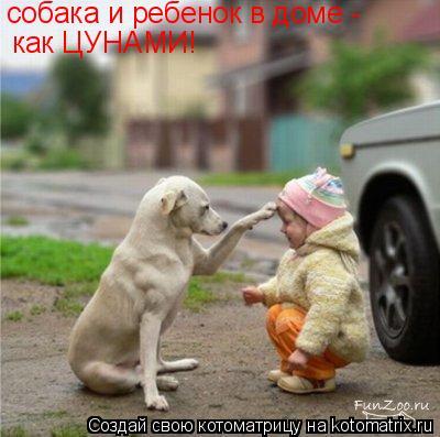 Котоматрица: собака и ребенок в доме -  как ЦУНАМИ!