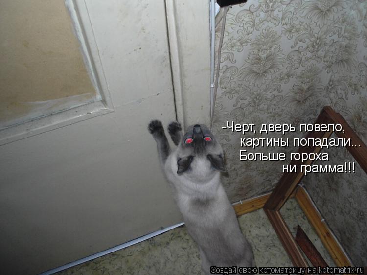 Котоматрица: -Черт, дверь повело,  картины попадали... Больше гороха  ни грамма!!!