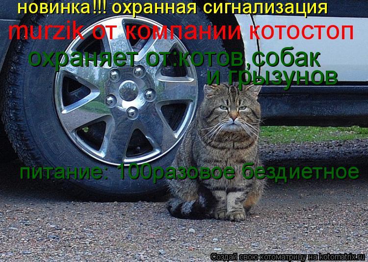 Котоматрица: новинка!!! охранная сигнализация murzik от компании котостоп охраняет от:котов,собак и грызунов питание: 100разовое бездиетное