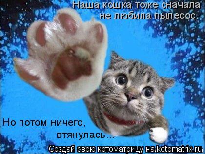 Котоматрица: Наша кошка тоже сначала не любила пылесос. Наша кошка тоже сначала не любила пылесос. Но потом ничего, втянулась...