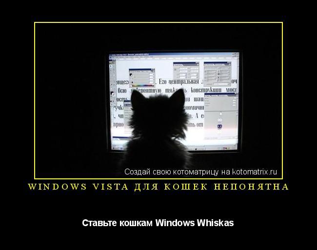 Котоматрица: Windows Vista для кошек непонятна Ставьте кошкам Windows Whiskas