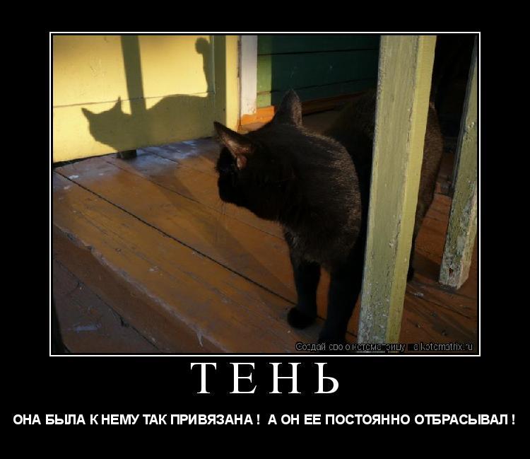 http://kotomatrix.ru/images/lolz/2009/08/01/1Z.jpg