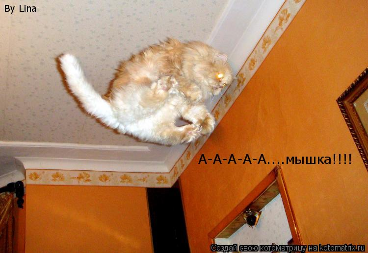 Котоматрица: А-А-А-А-А....мышка!!!! By Lina