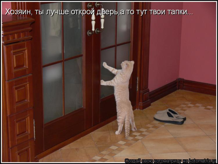 Котоматрица: Хозяин, ты лучше открой дверь,а то тут твои тапки...