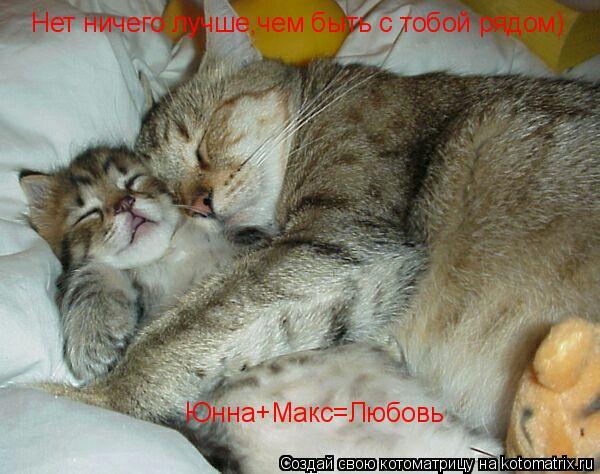 Котоматрица: Нет ничего лучше,чем быть с тобой рядом) Юнна+Макс=Любовь