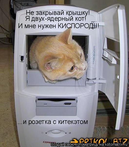 Котоматрица: Не закрывай крышку! Я двух-ядерный кот! И мне нужен КИСЛОРОД!!! ...и розетка с китекэтом