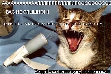 Котоматрица: ААААААААААААЛЛЛЛЛЛЛЛЛЛЛЛЛЛООООООООООООО!!!!!!!!!!! ВАС НЕ СЛЫШНО!!!! ПРАВИЛЬНО ВСЕ ТАКИ ПАПА ГОВОРИЛ ЧТО НЕ НАДА ТАК  В ТРУБКУ ОТРАТЬ ПРАВИЛЬНО