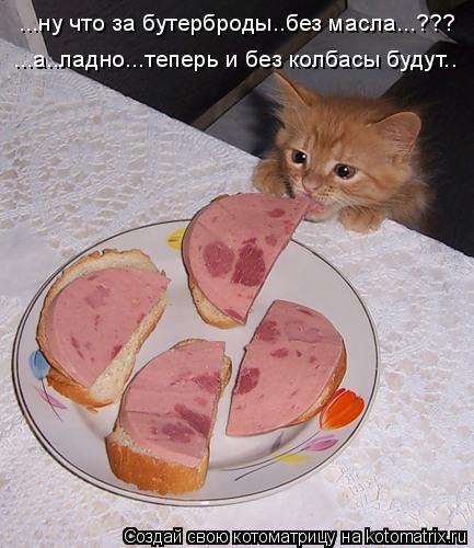 Котоматрица: ...ну что за бутерброды..без масла...??? ...а..ладно...теперь и без колбасы будут..