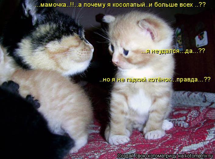 Котоматрица: ...мамочка..!!..а почему я косолапый..и больше всех ..?? ...я неудался...да...?? ..но я не гадкий котёнок...правда...??