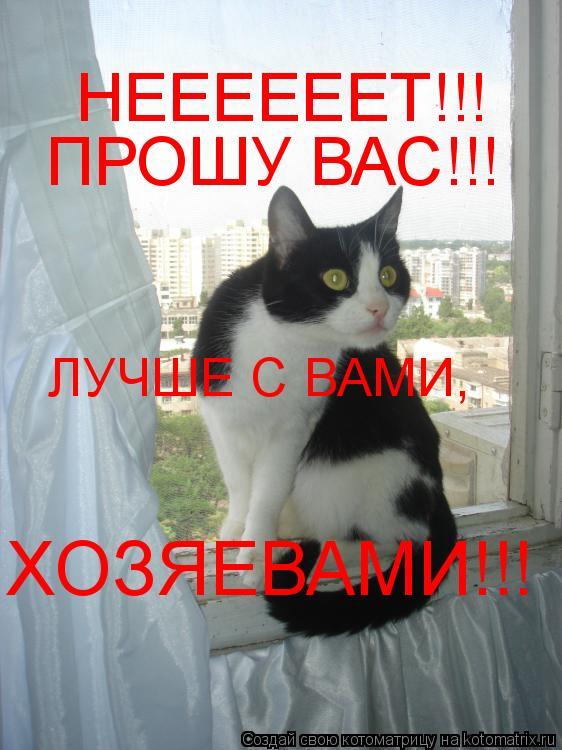 Котоматрица: НЕЕЕЕЕЕТ!!! ПРОШУ ВАС!!! ЛУЧШЕ С ВАМИ,  ХОЗЯЕВАМИ!!!