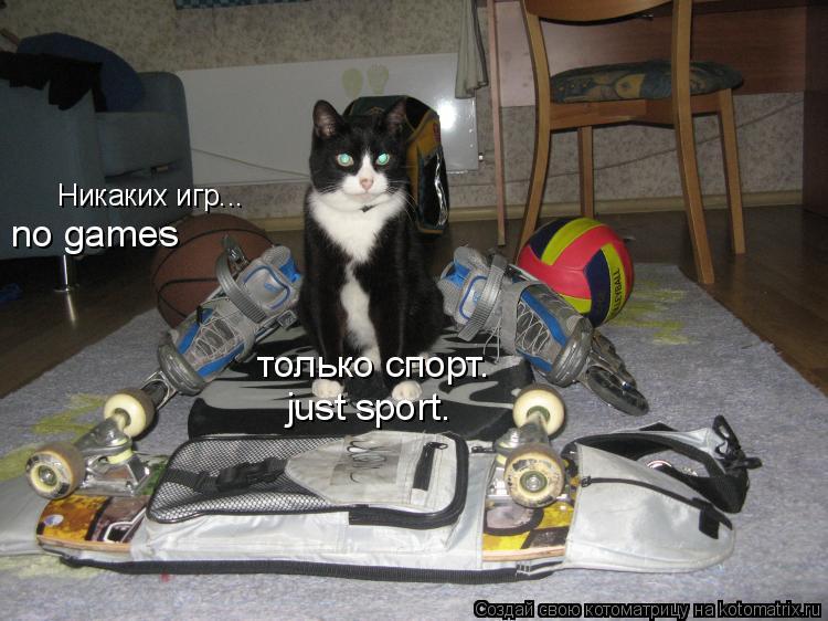 Котоматрица: Никаких игр... только спорт. no games just sport.