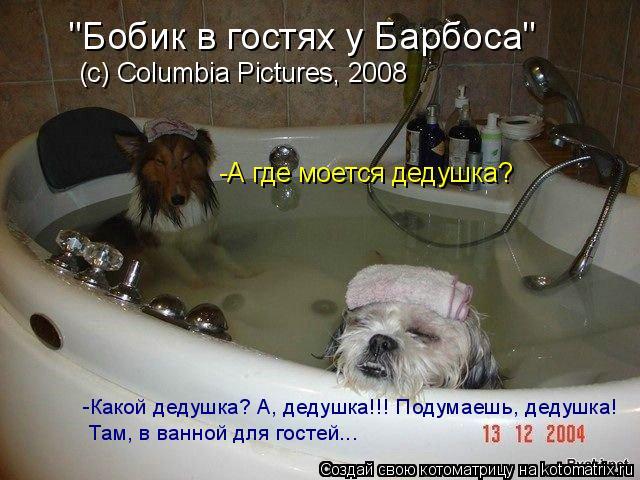 """Котоматрица: """"Бобик в гостях у Барбоса"""" (c) Columbia Pictures, 2008 -А где моется дедушка? -Какой дедушка? А, дедушка!!! Подумаешь, дедушка! Там, в ванной для гост"""