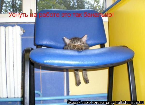 Котоматрица: Уснуть на работе это так банально!