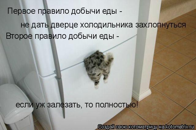 Котоматрица: Первое правило добычи еды -  не дать дверце холодильника захлопнуться Второе правило добычи еды -  если уж залезать, то полностью!