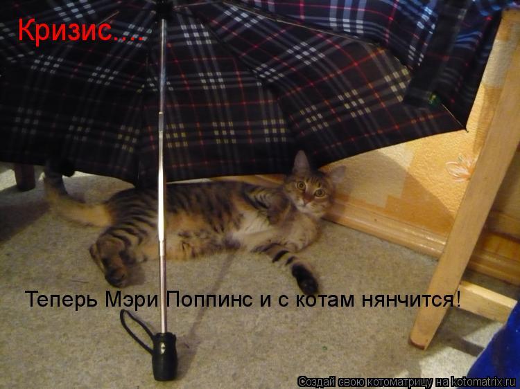 Котоматрица: Кризис.... Теперь Мэри Поппинс и с котам нянчится!