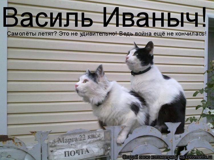 Котоматрица: Василь Иваныч! Самолёты летят? Это не удивительно! Ведь война ещё не кончилась!