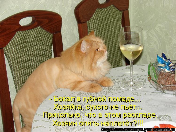 Котоматрица: - Бокал в губной помаде... Хозяйка, сухого не пьёт... Прикольно, что в этом раскладе, Хозяин опять наплетёт?!!!