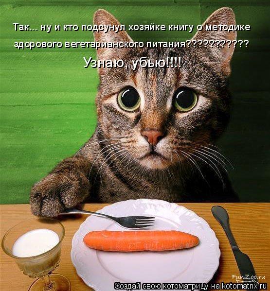 Котоматрица: Так... ну и кто подсунул хозяйке книгу о методике  здорового вегетарианского питания??????????? Узнаю, убью!!!!
