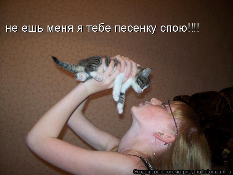 Котоматрица: не ешь меня я тебе песенку спою!!!!