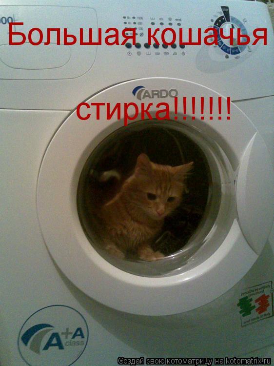 Котоматрица: Большая кошачья стирка!!!!!!!