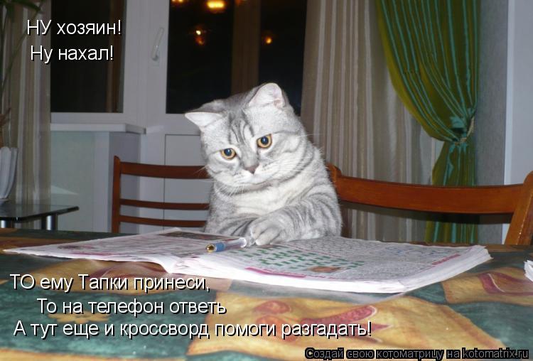 Котоматрица: НУ хозяин! Ну нахал! ТО ему Тапки принеси, То на телефон ответь А тут еще и кроссворд помоги разгадать!