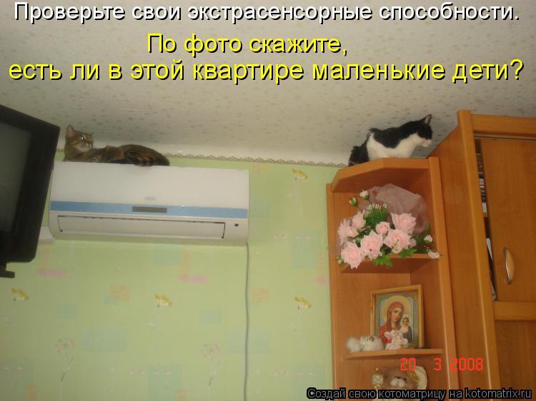 Котоматрица: Проверьте свои экстрасенсорные способности. По фото скажите, есть ли в этой квартире маленькие дети?