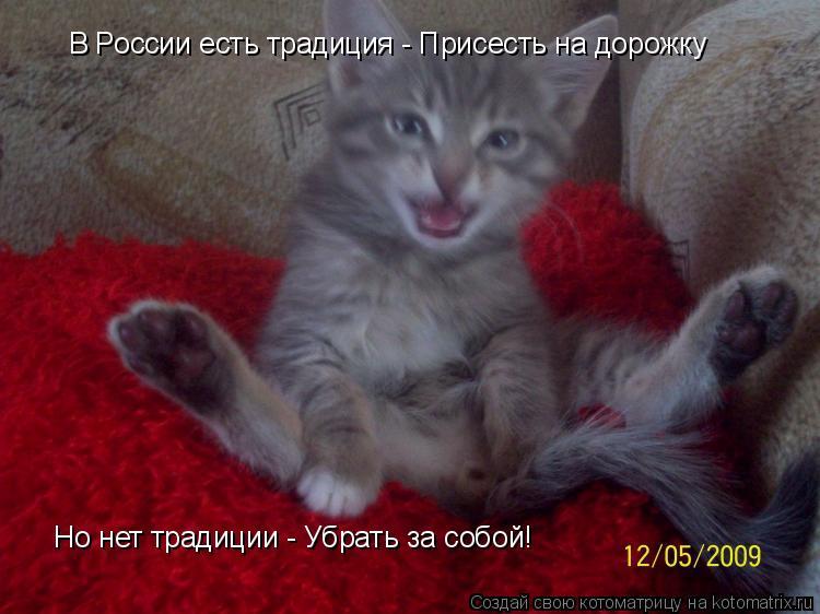 Котоматрица: В России есть традиция - Присесть на дорожку Но нет традиции - Убрать за собой!
