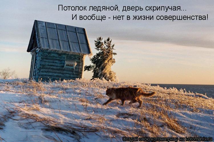 Котоматрица: Потолок ледяной, дверь скрипучая... И вообще - нет в жизни совершенства!