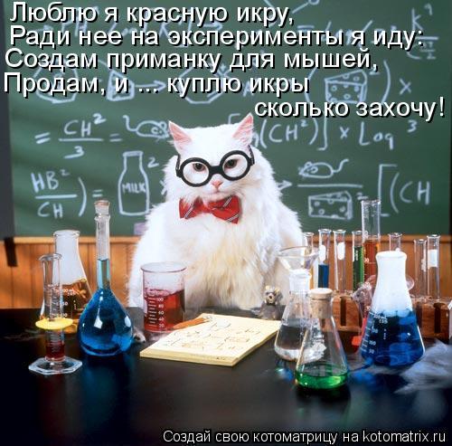 Котоматрица: Люблю я красную икру,  Ради нее на эксперименты я иду: Создам приманку для мышей, Продам, и ... куплю икры  сколько захочу!