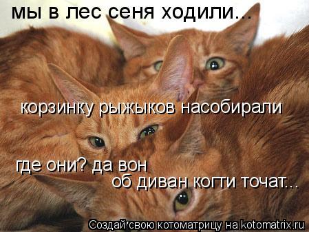 Котоматрица: мы в лес сеня ходили... корзинку рыжыков насобирали где они? да вон об диван когти точат...