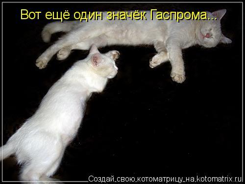 Котоматрица: Вот ещё один значёк Гаспрома...